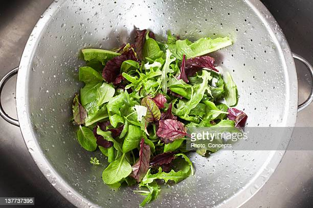 washed salad in sieve - lettuce stock pictures, royalty-free photos & images