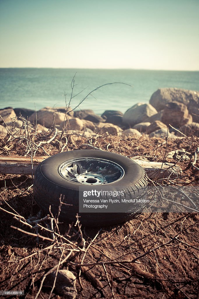 Washed up Tire : Stock Photo