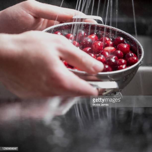 washing cranberries - brycia james stock pictures, royalty-free photos & images