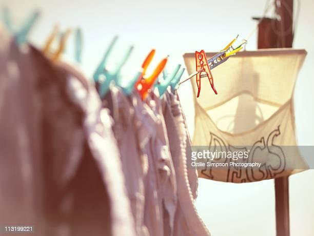 Washing Line Pegs