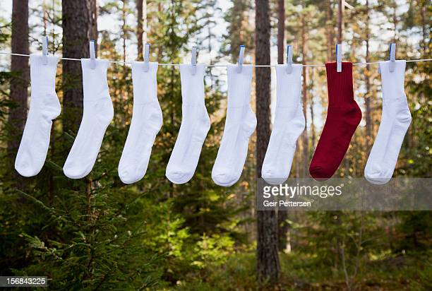 Washing line with row of socks
