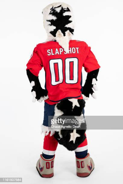 Washington Capitals mascot Slapshot poses for a portrait on August 13 2019 at the United Center in Chicago Illinois