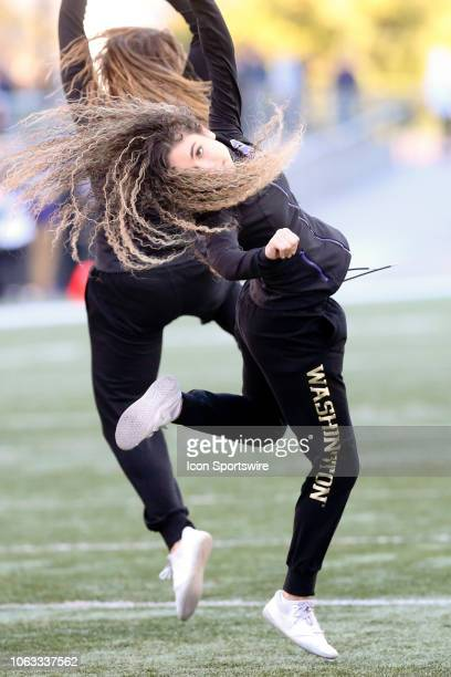 Washington cheerleader Katia Lucas entertained fans during the second quarter between the Washington Huskies and the Oregon Beavers on November 17 at...