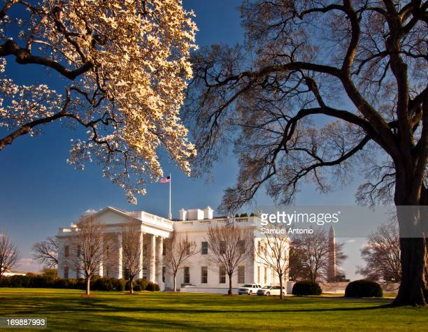 CONTENT] Washington DC A view of the White House 1600 Pennsylvania Avenue near Lafayette Square in the spring Washington Monument in the background...