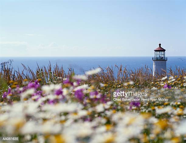 USA, Washington, Fort Canby State Park, North Head lighthouse, summer