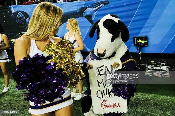 Washington Huskies cheerleader and the Chic Fila cow during the SemiFinal Peach Bowl between the Washington Huskies and the Alabama Crimson Tide on...