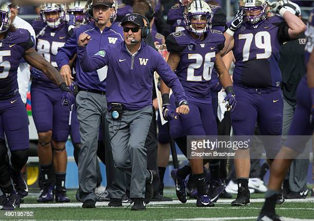 Washington Huskies head coach Chris Petersen celebrates a goal line stand against the California Golden Bears during the first half of a college...