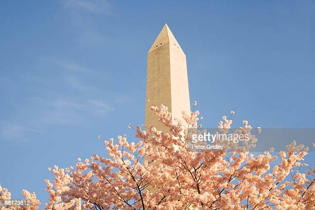 washington monument in washington, dc - symbolism stock pictures, royalty-free photos & images