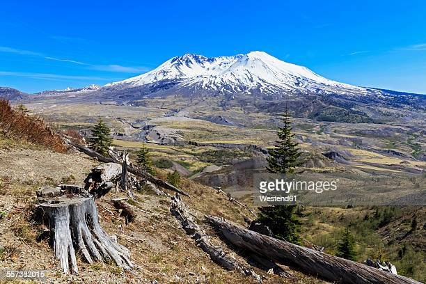 usa, washington, mount st. helens as seen from johnston ridge observatory and damage in landscape from eruption - mount st. helens stock pictures, royalty-free photos & images