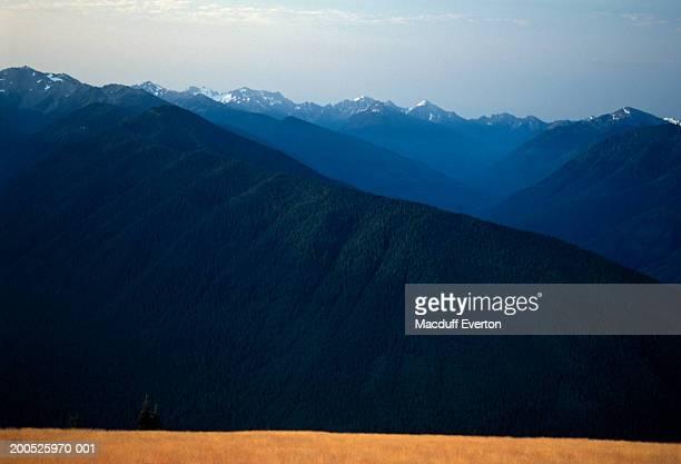 USA, Washington, mountain range, view from Hurricane Ridge