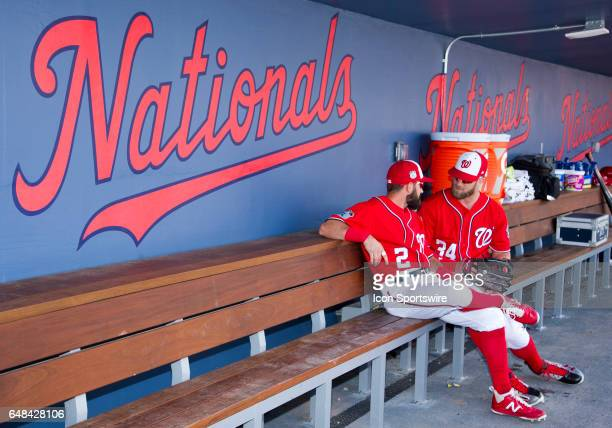 Washington Nationals Outfielder Bryce Harper and Washington Nationals Outfielder Adam Eaton sit on the bench in the dugout during a MLB spring...