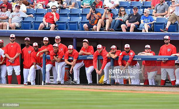 Washington Nationals players look on from the dugout during the Spring Training game against the Detroit Tigers at Space Coast Stadium on March 5...