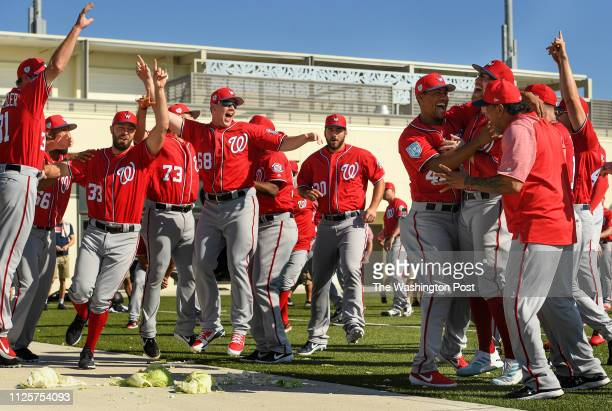 BEACH FL FEBRUARY Washington Nationals relief pitcher Sean Doolittle second from right is mobbed after his team wins the cabbage race at the start of...