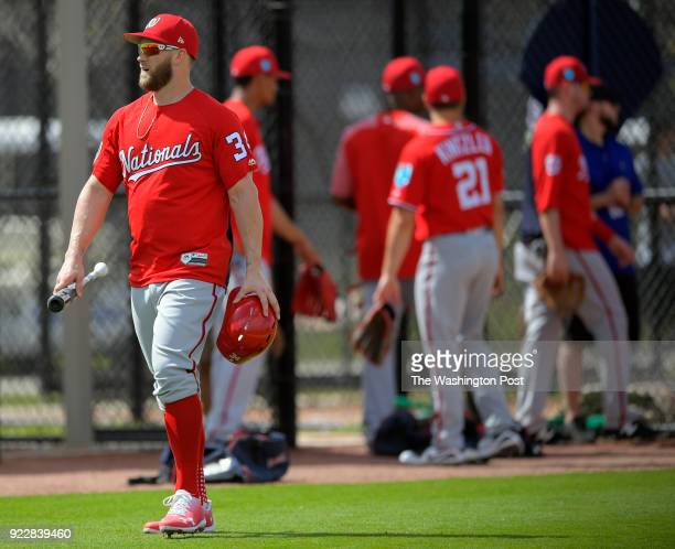 Washington Nationals right fielder Bryce Harper with his bat and helmet arrives for batting practice as the Washington Nationals team assembles for...