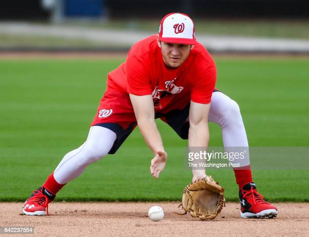 Washington Nationals shortstop Trea Turner fields grounders at the Ballpark of the Palm Beaches in West Palm Beach Fl on February 16 2017