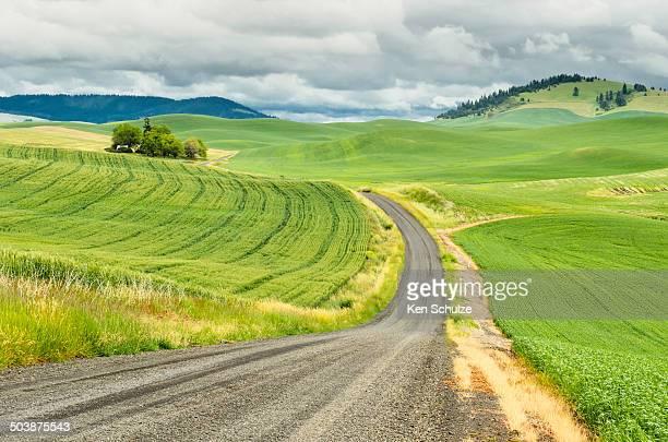 USA, Washington, Palouse, Winding country road