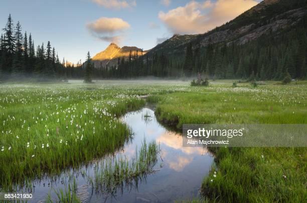 Washington Pass North Cascades
