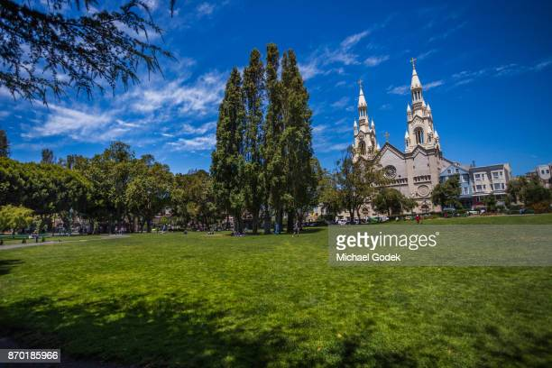washington square park in downtown san fransisco with bright blue sky - washington square park stock pictures, royalty-free photos & images