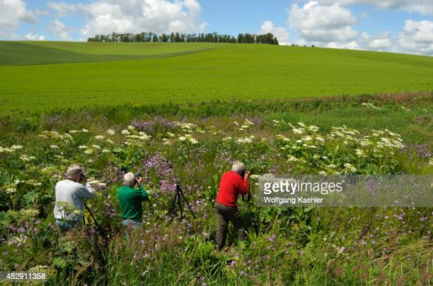 USA Washington State Palouse Country Near Pullman People Photographing Wildflowers Cumulus Clouds