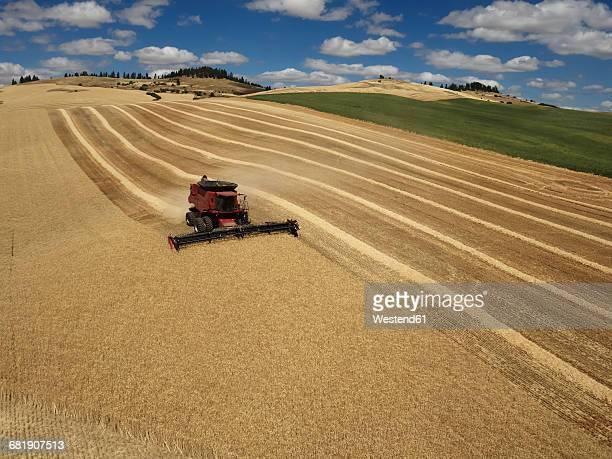 USA, Washington State, Palouse hills, wheat field and combine harvester