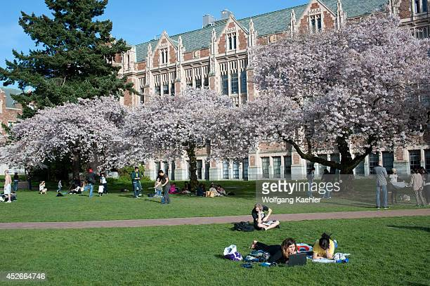 USA Washington State Seattle University Of Washington Campus The Quad With Flowering Cherry Trees In Spring Students On Lawn