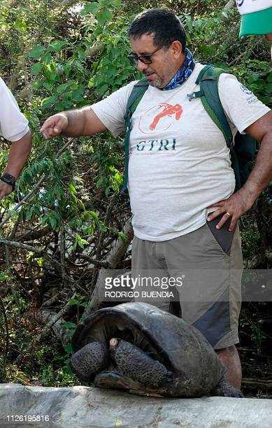 Washington Tapia member of Galapagos Conservancy is pictured with a specimen of the giant Galapagos tortoise Chelonoidis phantasticus thought to have...