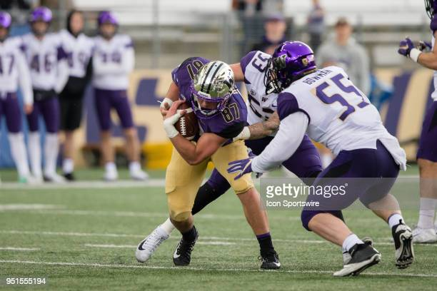 Washington tight end Cade Otton makes a catch in front of linebacker Ryan Bowman during the University of Washington Spring Game at Husky Stadium on...