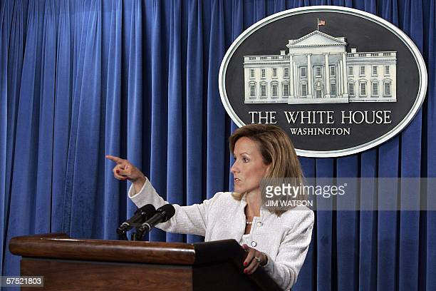 Assistant to the US President for Homeland Security and Counterterrorism Fran Townsend asks for questions during a briefing on the National Strategy...