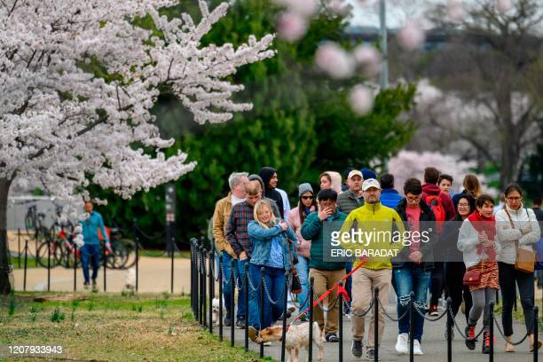 Washingtonians and tourists walk around the tidal basin to see this years Cherry Blossom's despite the outbreak of Coronavirus COVID19 and the social...