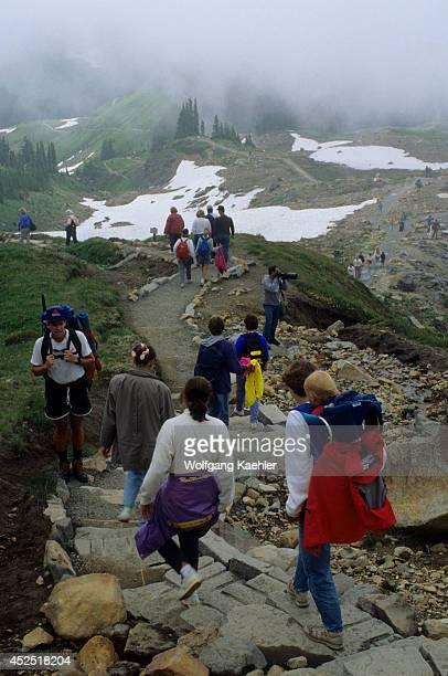 USA Washingtonmt Rainier National Park Paradise Crowded Trail