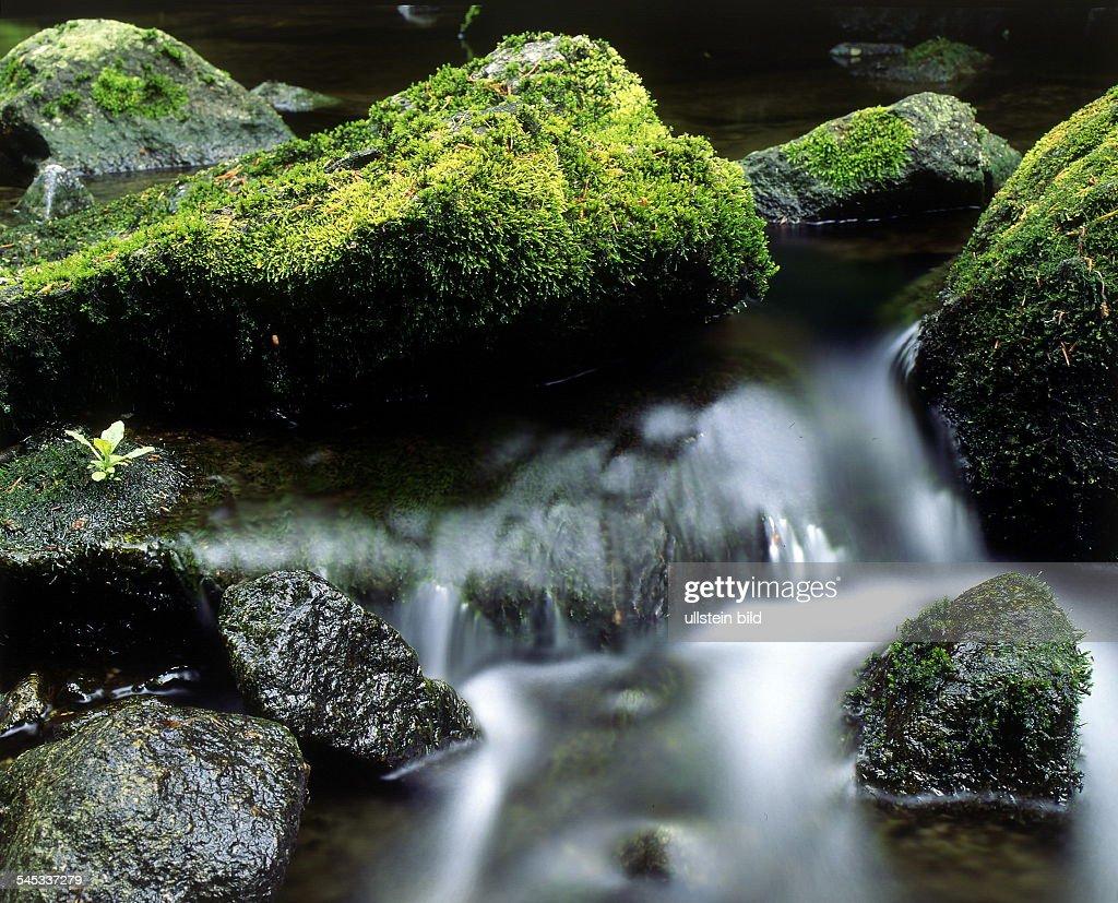 Wasser Eines Baches Zwischenbemoosten Steinen 1996 News Photo