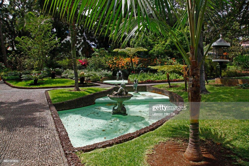 Wasserlauf Im Garten Der Quinta Vigia Funchal Madeira Portugal
