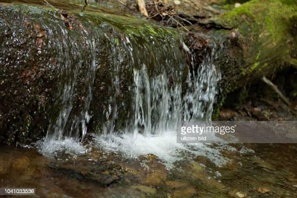 Wasserlauf Mittelsteighuette fliessendes Wasser ueber Felsschwelle
