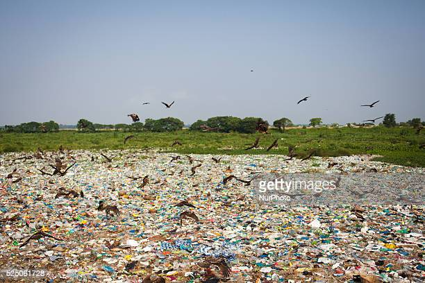 Waste management is going to be one of the greatest challenges in near future Developed countries in the world are already taking measures to deal...