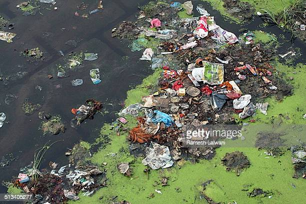 waste material in yamuna - yamuna river stock pictures, royalty-free photos & images