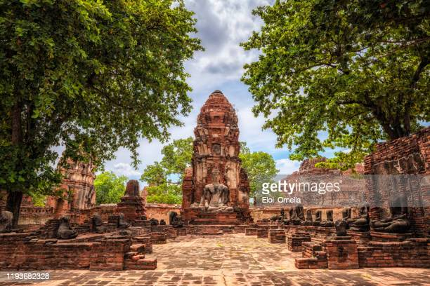 wat maha that old temple ruins in ayutthaya, thailand - ayuthaya province stock pictures, royalty-free photos & images