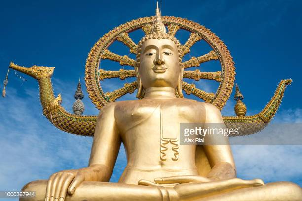 wat phra yai ( big buddha ), koh samui, thailand - zen rial stock photos and pictures