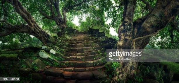 wat phu (meaning mountain temple) - old ruin stock pictures, royalty-free photos & images