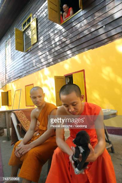 Wat Si Muang ( Simuong) buddhist temple.  Novice monk with his little dog.  Laos.
