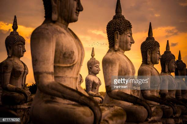 wat thung yai (buddhism park) - buddha stock photos and pictures
