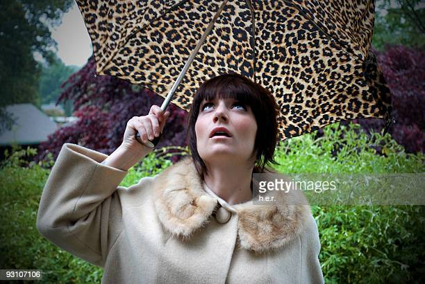 watching for rain - leopard print stock pictures, royalty-free photos & images