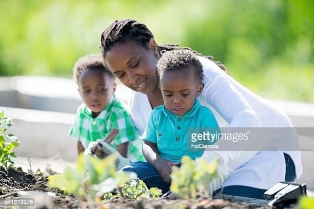 Watching Her Twin Boys While Gardening