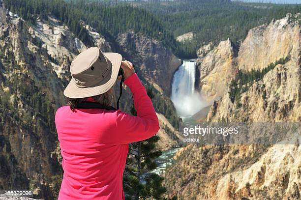 watching nature - yellowstone river stock photos and pictures