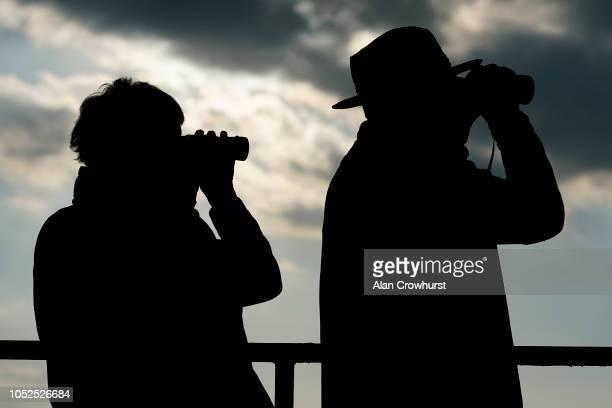 Watching the action at Wincanton Racecourse on October 19 2018 in Wincanton England