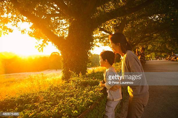 watching the sunset - peter lourenco stock pictures, royalty-free photos & images
