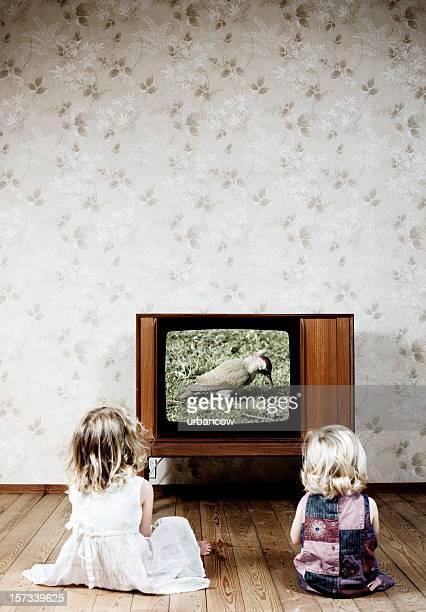 ながら、テレビ
