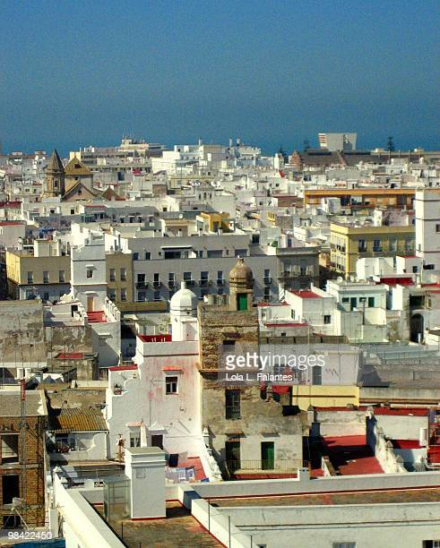 Watchtowers and roofs of Cadiz