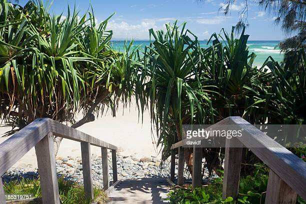 Wategoes Beach Boardwalk Steps, Byron Bay, Australia