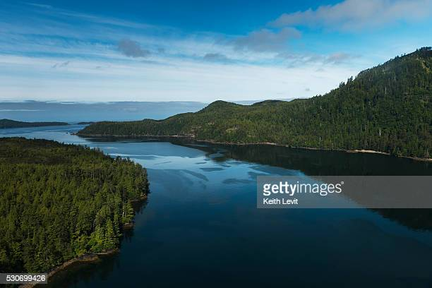 Water and dense forests around the Charlotte Islands; Skeena-Queen Charlotte, British Columbia, Canada
