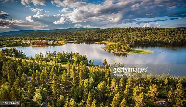 Water and forest, Adolfstromm, Lapland, Sweden